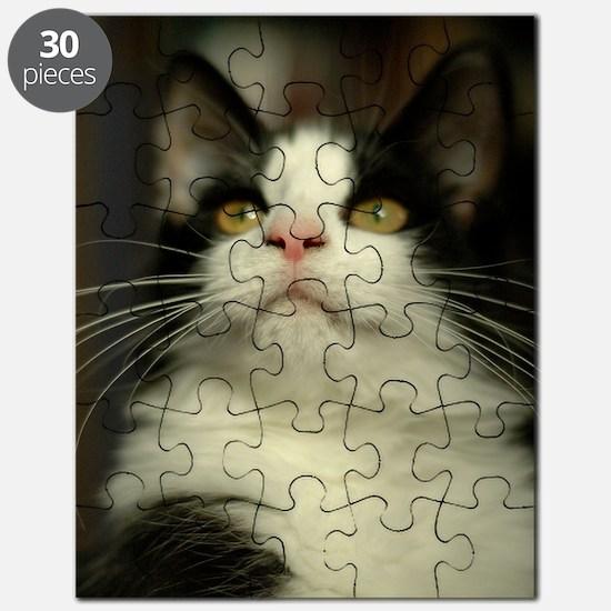 pet-nc16 Puzzle