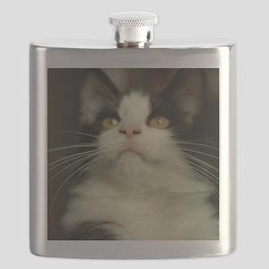 pet-nc16 Flask