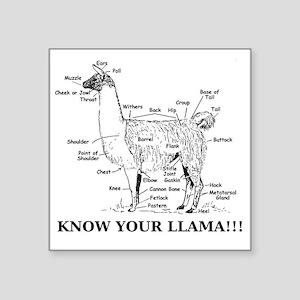 "925746_10477594_llama_orig Square Sticker 3"" x 3"""