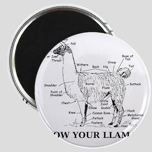 925746_10477594_llama_orig Magnet