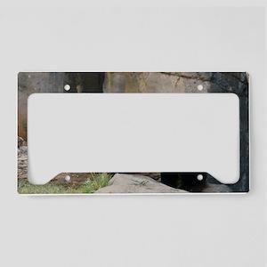 panda1 License Plate Holder
