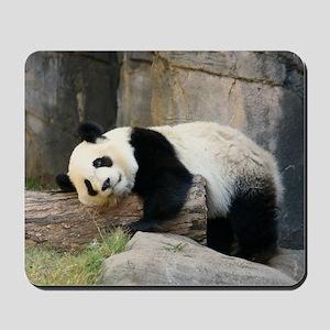 panda1 Mousepad