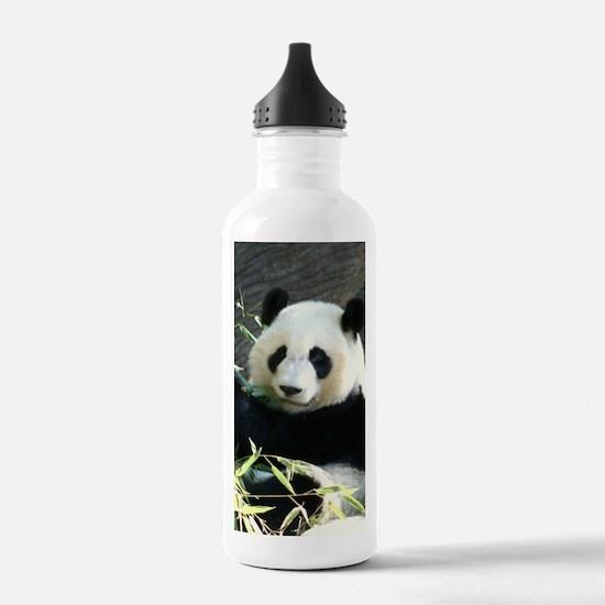 panda2 - Copy Water Bottle