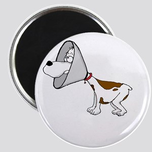 cone of shame3 White300 Magnet