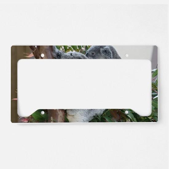 IMG_7756 License Plate Holder
