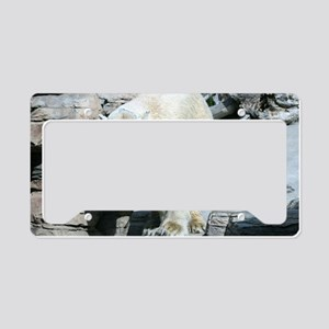 IMG_8102 License Plate Holder
