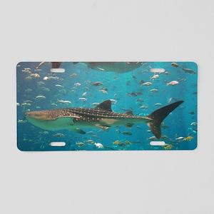 100_0887 Aluminum License Plate