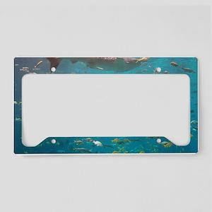 100_0887 License Plate Holder