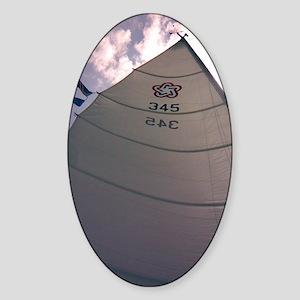 Mainsail Sticker (Oval)