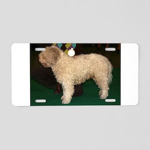 spanish water dog full Aluminum License Plate