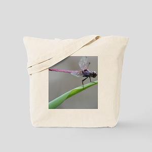2-Copy of IMG_3529 Tote Bag
