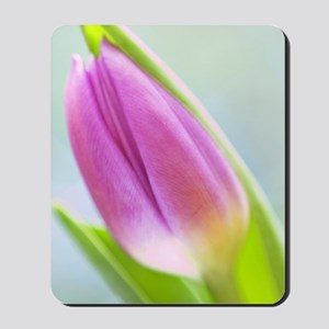 IMG_9480-01b Mousepad