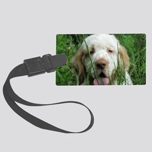 Picture2 129 Large Luggage Tag