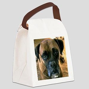 kash Canvas Lunch Bag