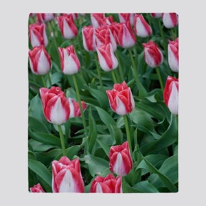 Red  White Tulips Throw Blanket