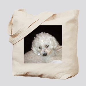 Sophie Maus Painting May 7 10 copy Tote Bag