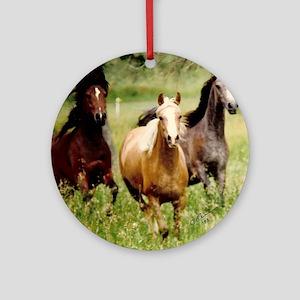 3-horses Round Ornament