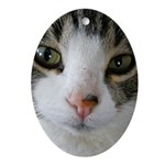 I See You Cat Ornament (Oval)