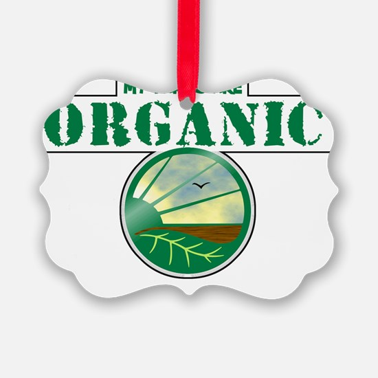 MY_Farts_Are_Organic Ornament