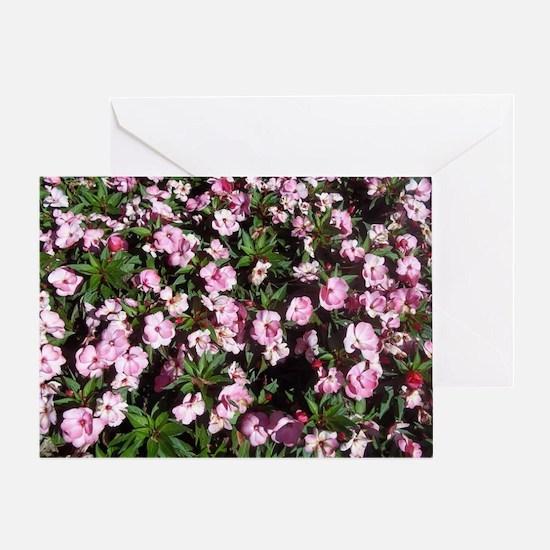 Fall Flowers in Williamsburg, VA Greeting Card
