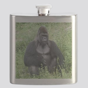 gorilla-cstr Flask