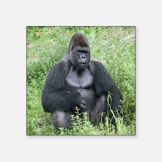 """gorilla-cstr Square Sticker 3"""" x 3"""""""