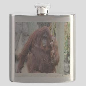 orang-Cstr Flask