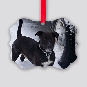 shorty Picture Ornament