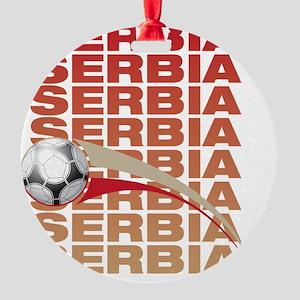 A_sERB_1 Round Ornament