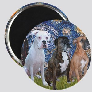 T-Starry Night - 3 Boxers Magnet