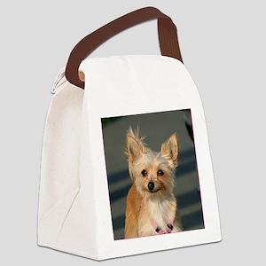 Chihuahua1 Canvas Lunch Bag