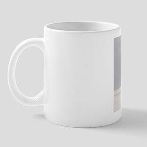 P1010033 Mug