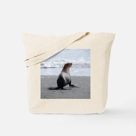 DSC04039 Tote Bag