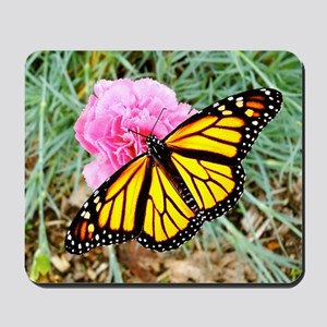 Monarch Butterfly Coasters, Keepsake Box Mousepad
