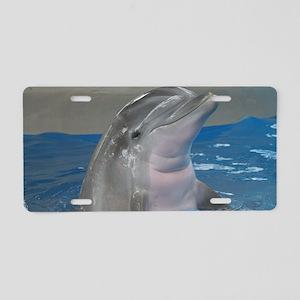 IMG_4949 Aluminum License Plate
