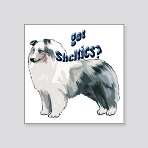 """blue merle shelty2 Square Sticker 3"""" x 3"""""""
