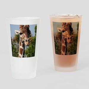 IMG_2543 Drinking Glass