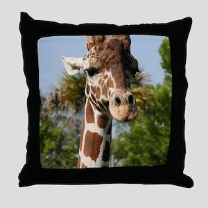 IMG_2543 Throw Pillow
