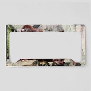IMG_6369 License Plate Holder