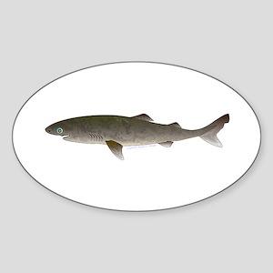 Greenland Shark Sticker