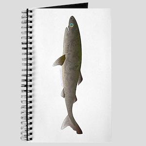 Greenland Shark Journal