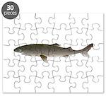Greenland Shark Puzzle