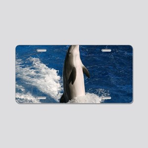 dolphin3 Aluminum License Plate
