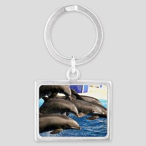 dolphin8 Landscape Keychain