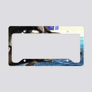 dolphin8 License Plate Holder