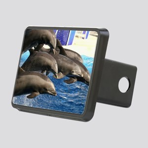 dolphin8 Rectangular Hitch Cover