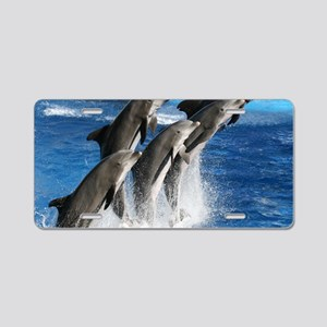 dolphin6 Aluminum License Plate