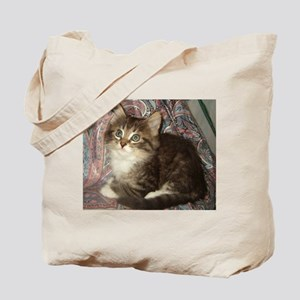 Maine Coon Kitten Keagan Tote Bag