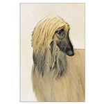 Afghan Hound Large Poster