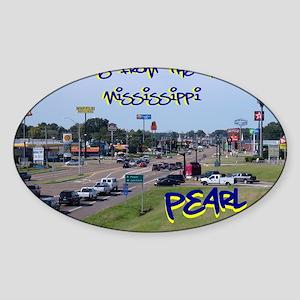 3-DSC02545A Sticker (Oval)